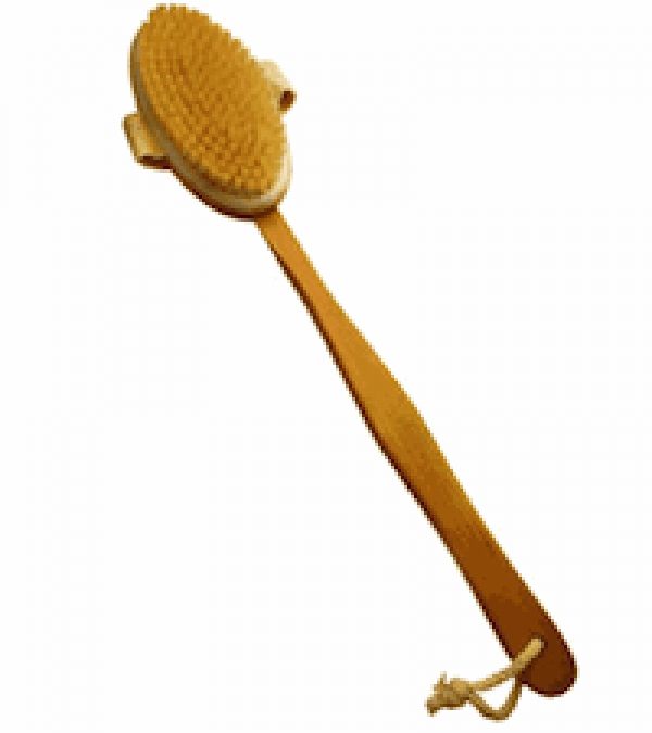 boost the immune detox with dry skin brushing