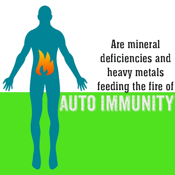 mineral deficiencies heavy metal or toxic mineral excess auto immunity